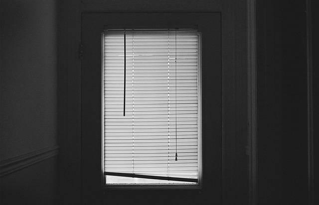 žaluzie na dveřích.jpg