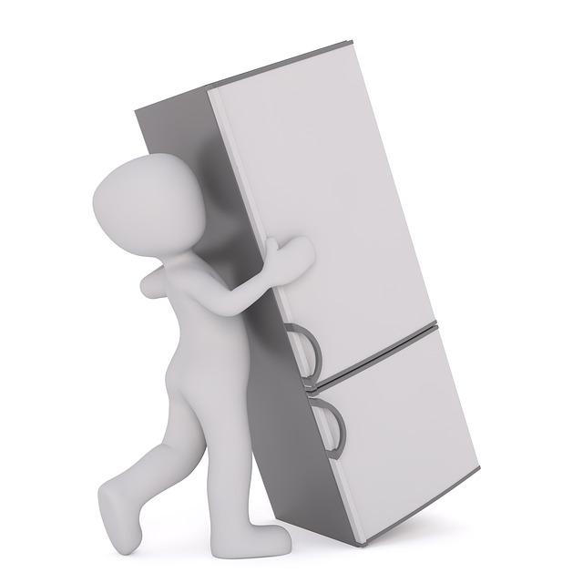 stěhování ledničky.jpg
