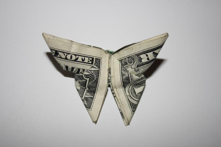 motýlek z dolarů