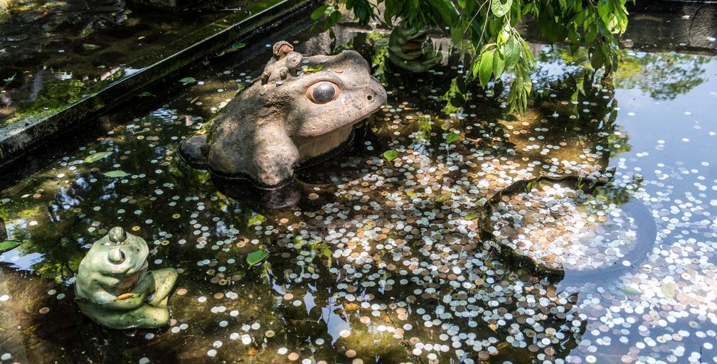 mince ve vodě