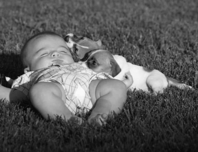 obrázek malého dítěte podřimujícího na louce