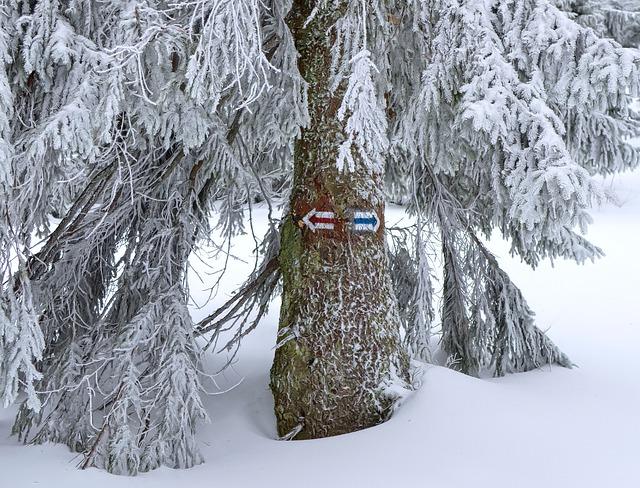 Zimní rozcestí